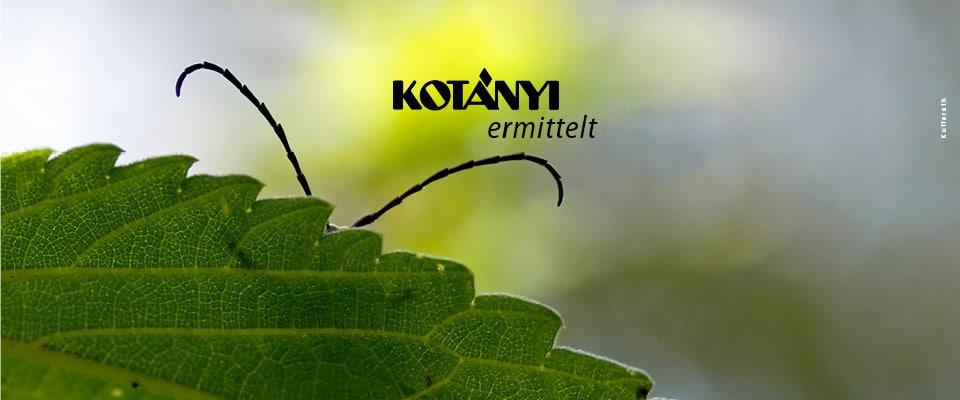 Kufferath_kotanyi_Produktdesign_teaser